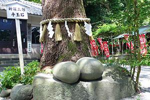 新羅三郎義光 八雲神社