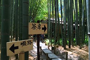 鎌倉の絶景ポイント