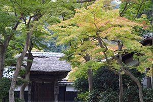 居士林 円覚寺