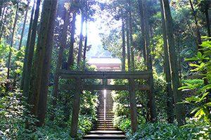熊野神社 鎌倉 十二所