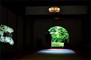 北鎌倉あじさい寺。明月院
