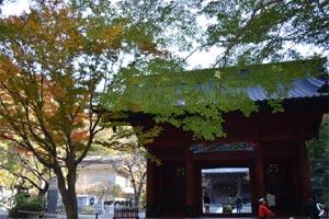 妙本寺(比企谷)