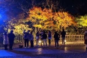 鎌倉の紅葉の名所